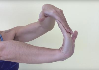 Estiramiento flexores dedos y palmares 2